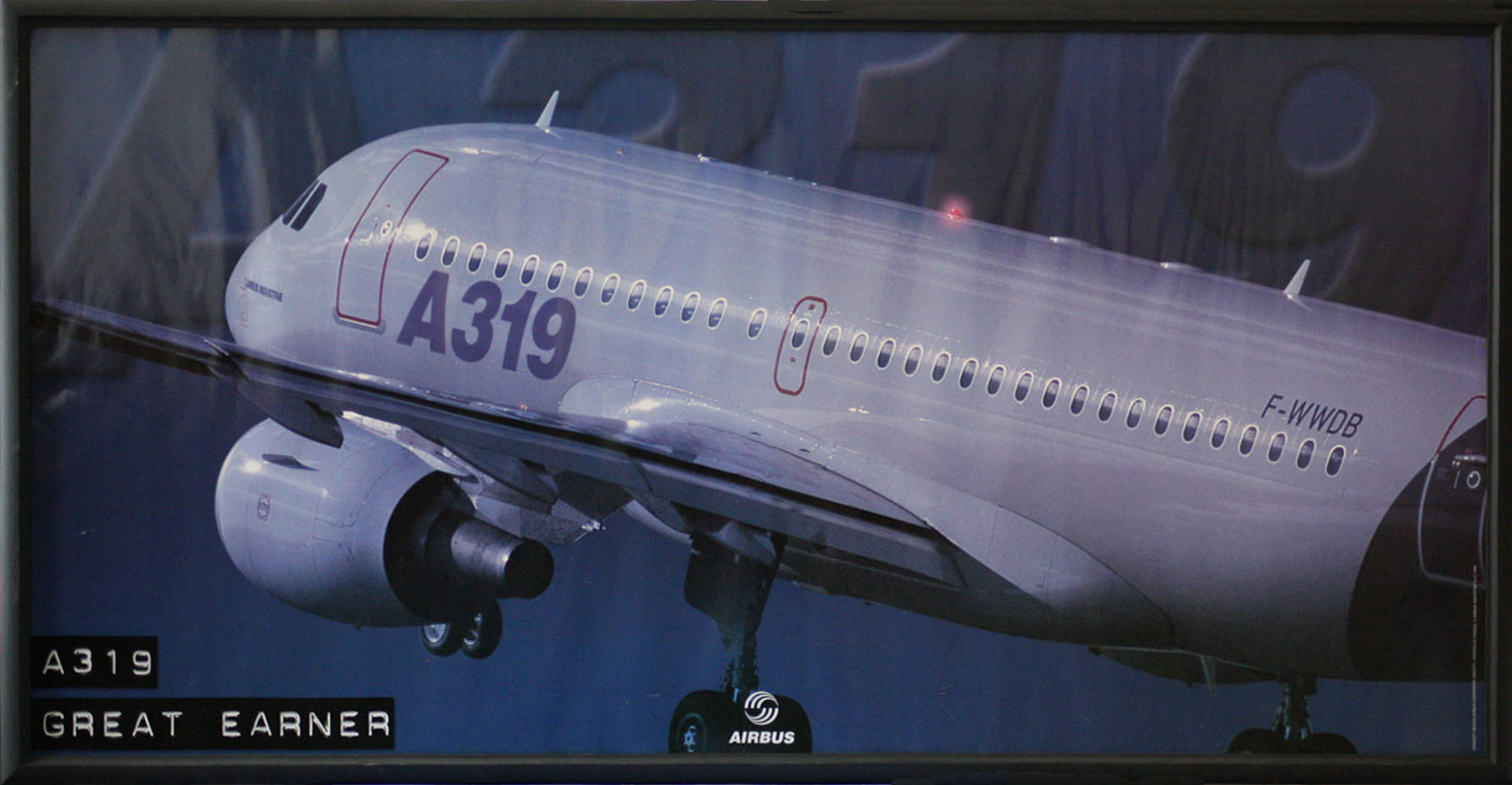 Airbus A319